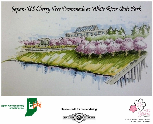 Indianapolis was selected as one 36 US cities for the centennial gift of cherry blossom trees from the government of Japan in 2012. This rendering from Litchfield Landscaping shows how the trees will be planted along White River State Park. Image by: Japan America Society of Indiana